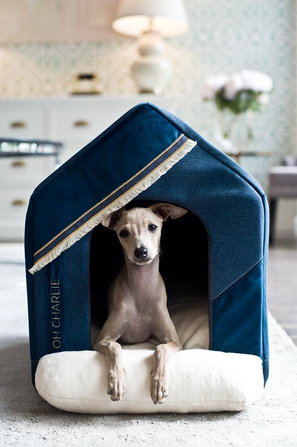 Allure_doghouse