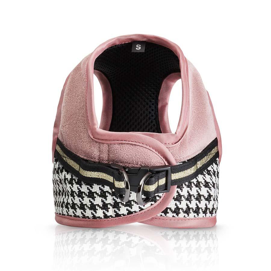 Harness Fashion Front (ハーネス ファッション 表)